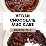 vegan mug cake pin